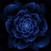 Blaue Blüte von fraktalise