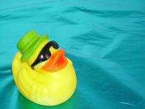 swimming Ray von frauwunschpunkt