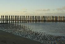 Pfähle am Strand von Simon Bernard