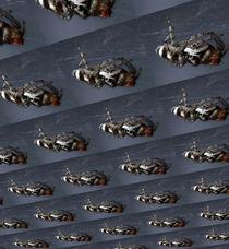 Springspinneninvasion von Rainar Nitzsche