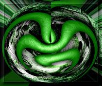 Acantho in Green von Rainar Nitzsche