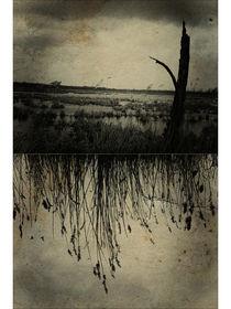 melancholia. by sommerpfuetze