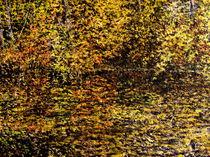 Herbstsinfonie von Wilhelm Brück
