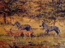 Afrikanische Impression von Wilhelm Brück