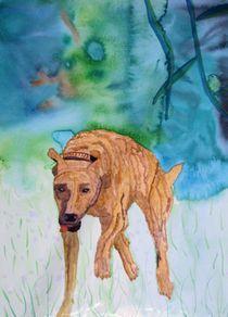 Windhund, Galgo, Greyhound, Pando von Guthier von Ursula Guthier