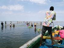 Strandnetz bergen - Saloum,Senegal - fair-fish.net by Billo Heinzpeter Studer