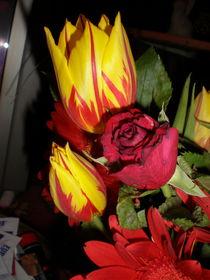 Tulpen und Rose von Henriette Abt