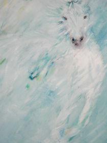 Weisses Pferd im Nebel von Margit Hübner