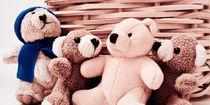 Teddy-Familientreffen by Petra Dammann