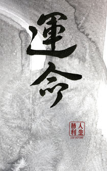 Bestimmung Destiny von TIMELESS ART Calligraphy