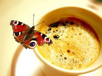 Einen Kaffee bitte von Bernhard Kosten