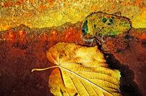 Herbstblätter von Bernhard Kosten