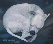 der kranke Hund