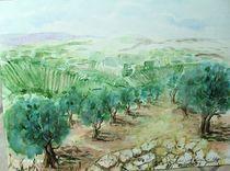 SYRISCHER OLIVENHAIN AQUARELL by ulk