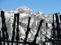 Skier by niehauto