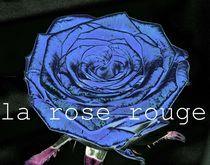 La rose rouge,  by Gabriele Klimek