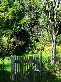 wunschgarten by Isabel Vogel