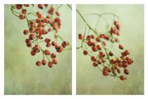Frutti d´autunno von Priska Wettstein