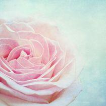 Glace au rose von Priska Wettstein