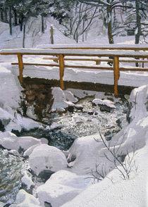 Die Brücke im Schnee von Gräfin Vroni von Burgstein