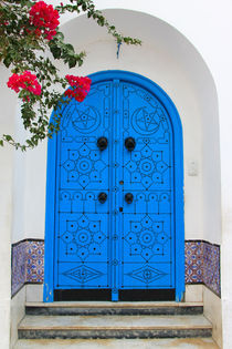 Die geheimnisvolle Tür by Anja Abel