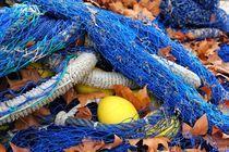 Fischernetz im Herbst von Anja Abel