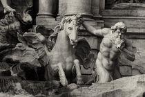 Fontana di Trevi  by Anja Abel