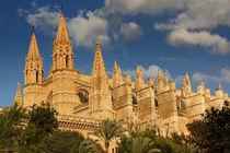 Palmas Kathedrale von Anja Abel
