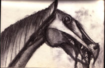 Sketch: the Horse by Jeroen Derks