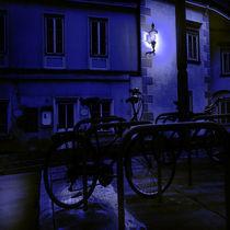 MOONLIGHT by tina rossbacher