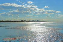 Wattenmeer im Gegenlicht von Udo Schiffgen