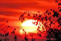 Sonnenuntergang (2) von Udo Schiffgen
