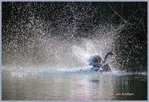 Wasserspiele von Udo Schiffgen
