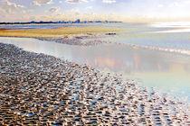 Das Wattenmeer von Udo Schiffgen