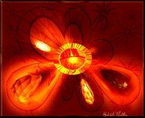 Blume Lebendig von Gabriele Nedilka