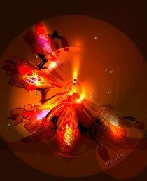 Lichtteller von Gabriele Nedilka