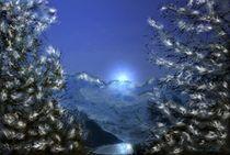 1.Winterbild by Gabriele Nedilka