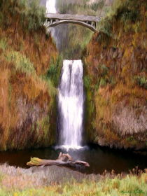 Wasserfall by Gabriele Nedilka