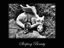 Sleeping Beauty von mirjam-otto-bildwerk