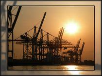 Kräne des Hamburger Hafens im Sonnenuntergang von mirjam-otto-bildwerk