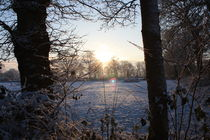 Winterlandschaft by michas-pix