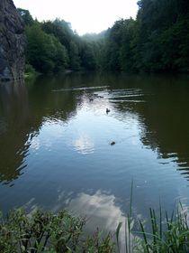 Wasserspiegelung am kleinen See an den Externstein von Christa Raatz