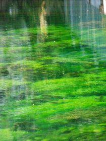 Wasserfee von Christa Raatz
