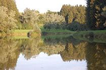 Wasserspiegelung auf dem See von Thomas Peter