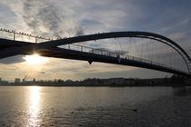 Dreiländerbrücke von Thomas Peter