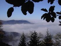 Nebel in den Bergen by Thomas Peter