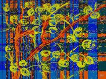 Beeren auf Apfel by Jürgen Kurpjuweit