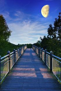 Mondbrücke (LIMITIERTE AUFLAGE 100) von leonardofranko