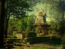 Die alte Mühle von Mathias May