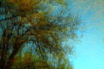Wasserwelten von blickpunkte